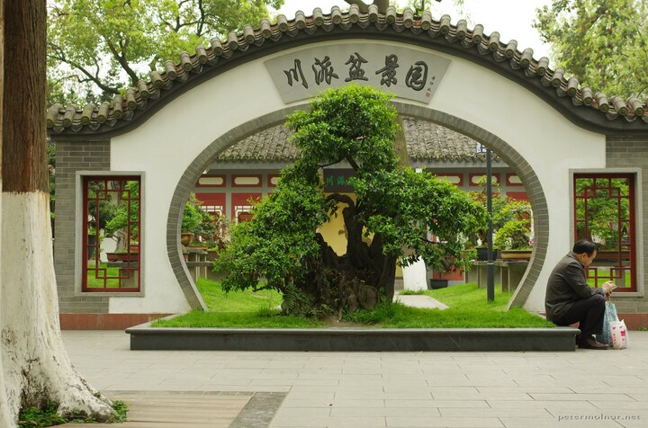 One of the beautiful moon gates in Baihuatan Park which is the entrance to the bonsai garden