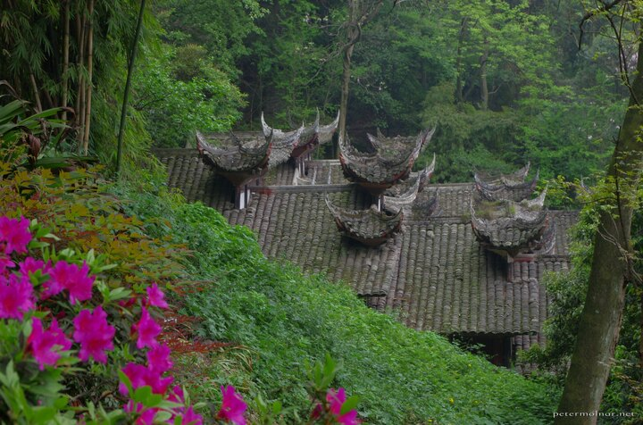 Flowers and ancient roofs in Dujiangyan