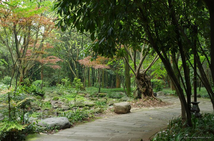 Garden at the feet of Mount Emei