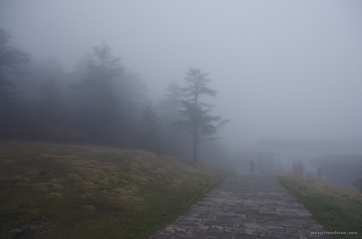 Thich fog blocking the view at Mount Emei