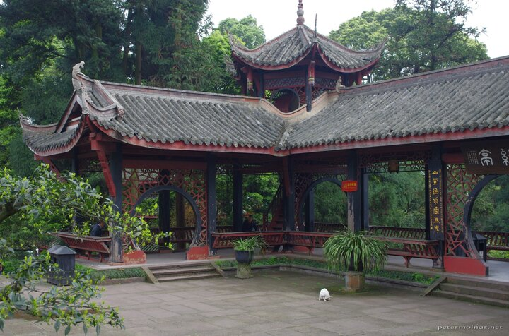 A corner of the Wannian Temple with a white cat