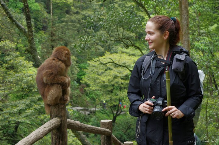 You can safely get very close to them - Nora with a Monkey