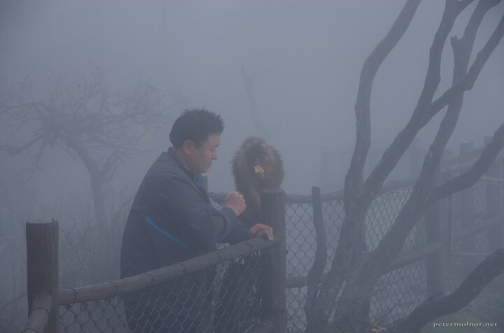 A man with a curious monkey at Mount Emei