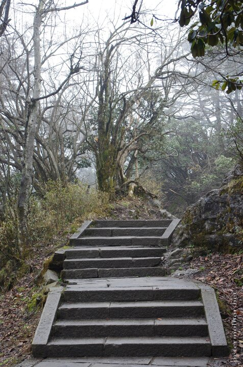 The beginning of the endless stairs at Mount Emei