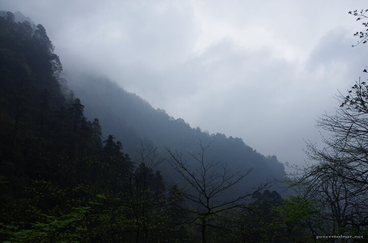 View from a path at Emeishan