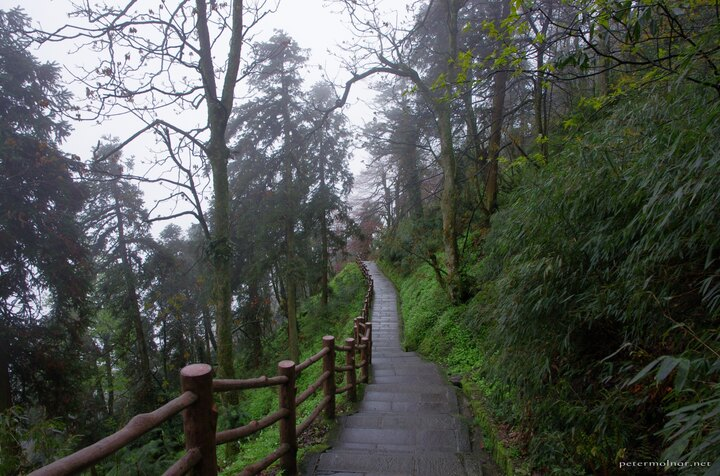 Endless stairs going down from Mount Emei