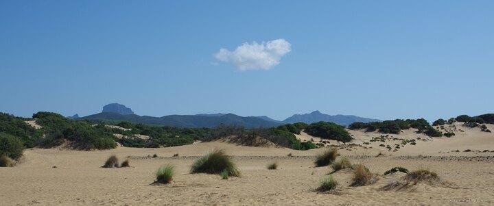 dune-di-piscinas